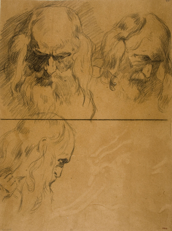 Antoni Fabrés - Estudis de cap masculí - Cap a 1903