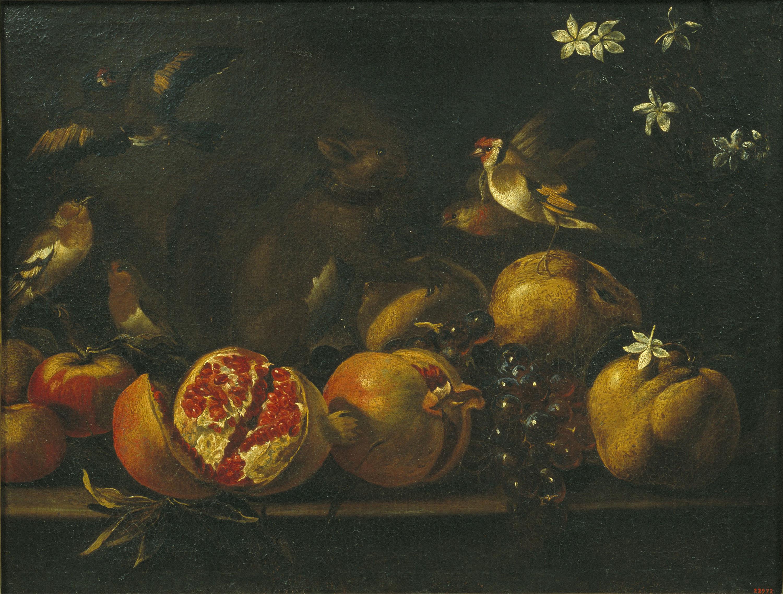 Tommaso Realfonzo (Masillo) - Natura morta amb magranes, raïm, ocells i un esquirol - Segle XVIII
