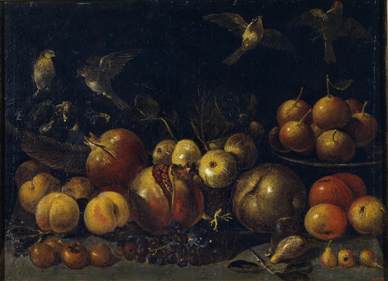 Tommaso Realfonzo (Masillo) - Natura morta amb magranes, pomes, peres, raïm, figues i ocells - Primera meitat del segle XVII