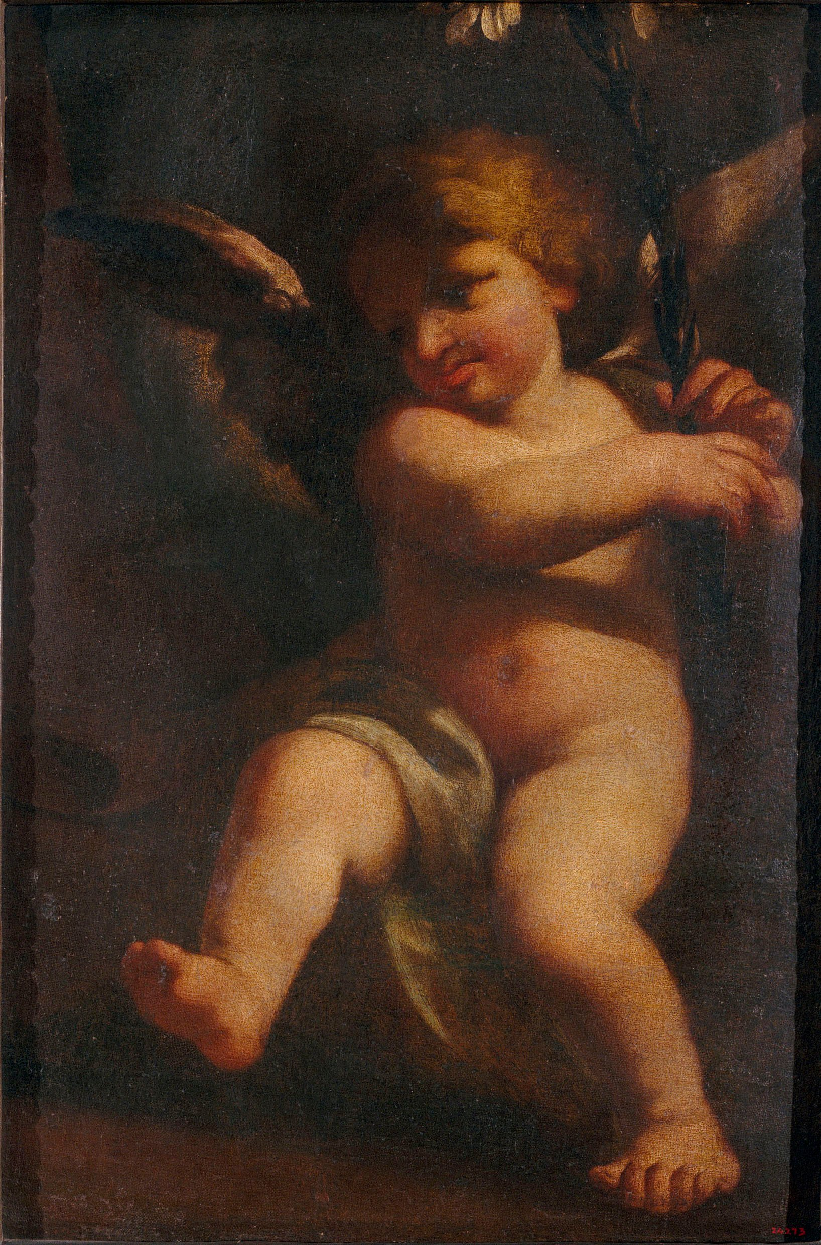 Pere Cuquet - Little Angel - 17th century