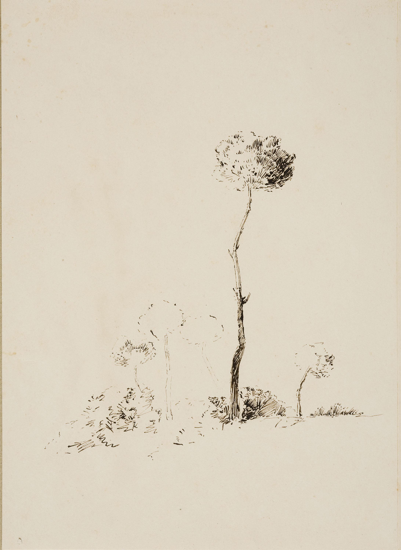 Francesc Gimeno - Vista parcial del Castell-Tortosa (anvers) / Estudi d'arbres (revers) - Cap a 1878 [1]