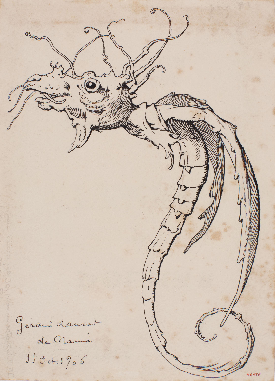 Apel·les Mestres - Planta de gerani transmutada en animal quimèric. Culdellàntia per al poema «Liliana» d'Apel·les Mestres - 1906