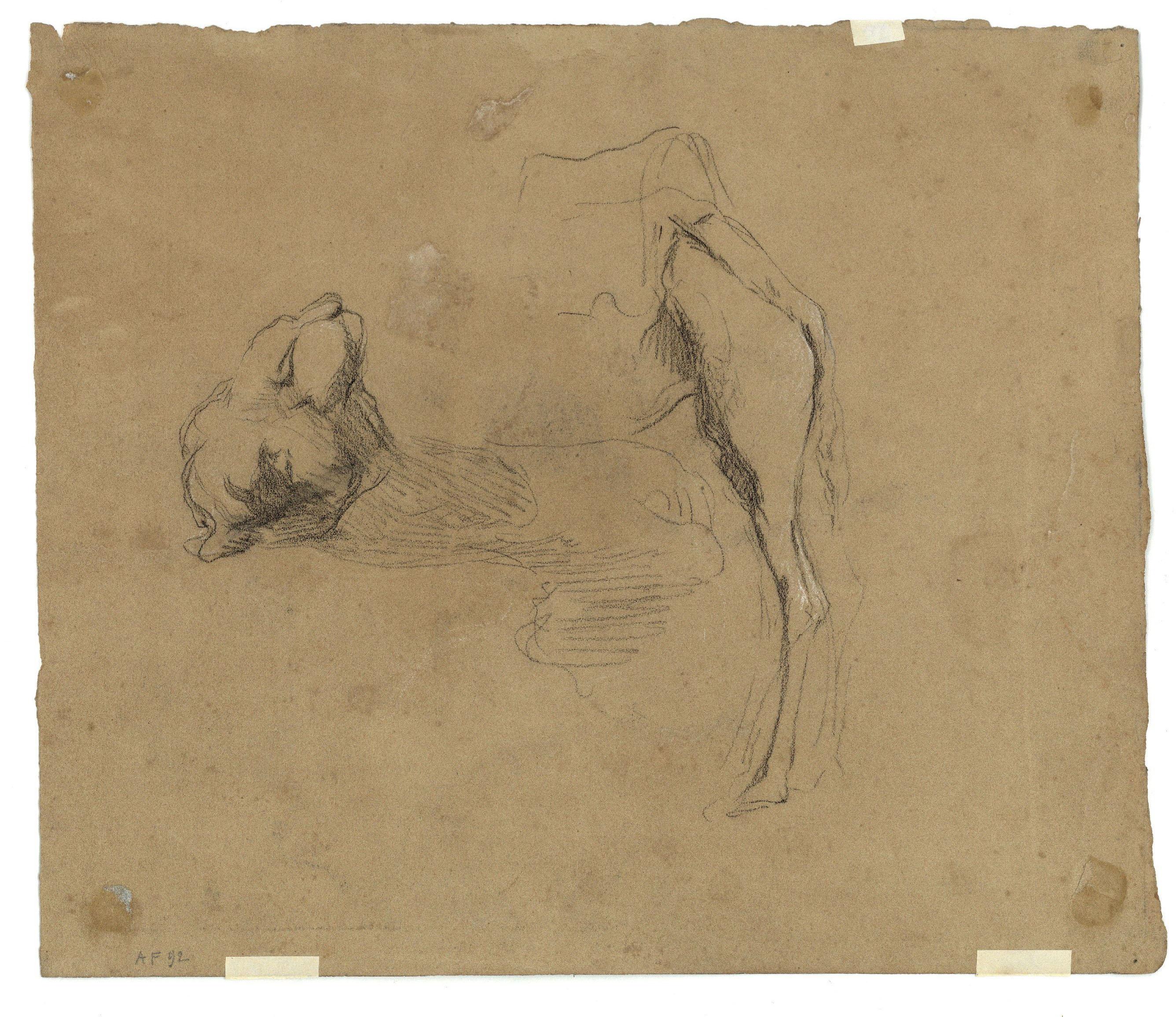 Marià Fortuny - Cap de camell i ruc (anvers) / Estudi de camell (revers) - Cap a 1862 [1]