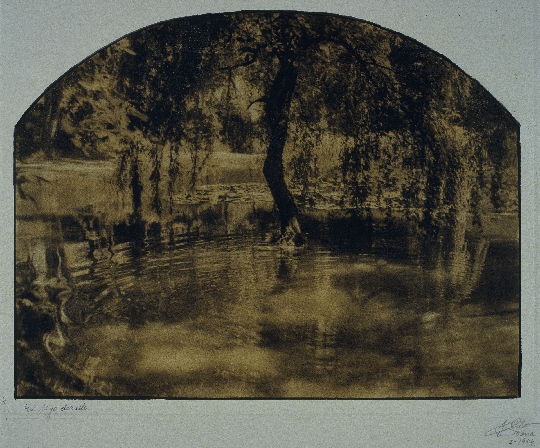Joaquim Pla Janini - El lago dorado - Gener de 1954