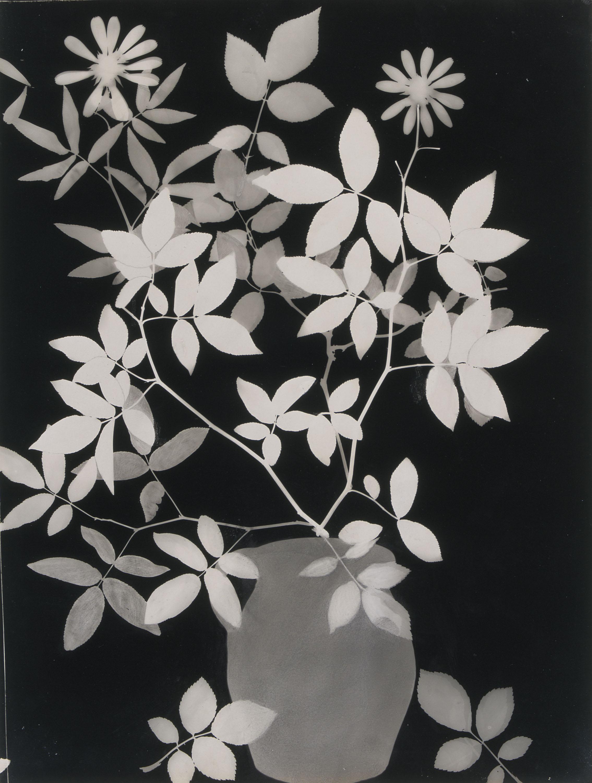 Emili Godes - Sense títol - Cap a 1930