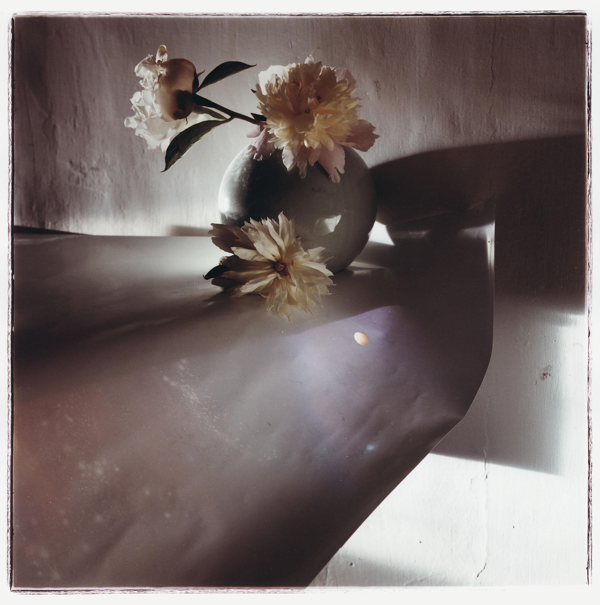 Toni Catany - Natura morta, 136 - 1987