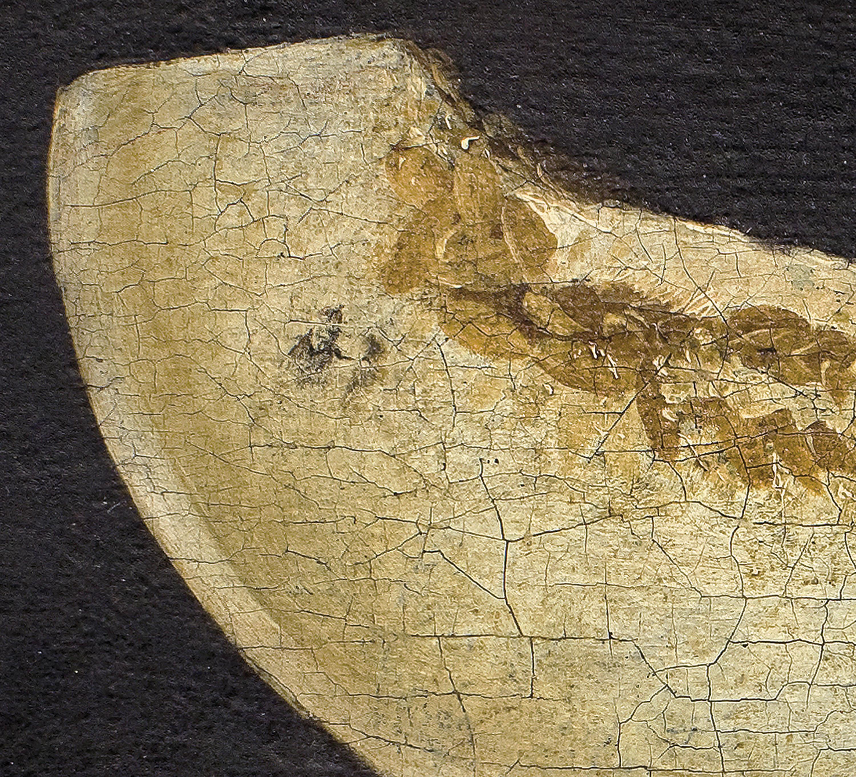 Francisco de Zurbarán - Natura morta amb cistelleta de prunes i tallada de meló - Entre 1640-1650 [1]