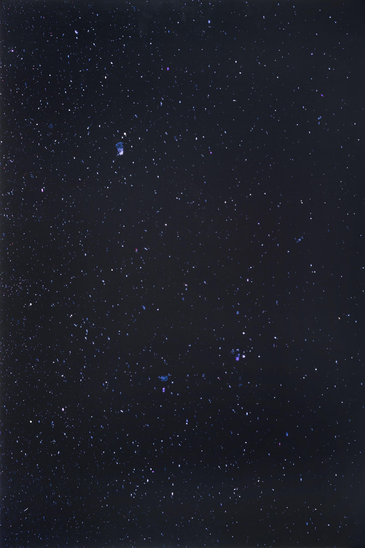 Joan Fontcuberta - MN 56 Lyra (Constellations) - 1993