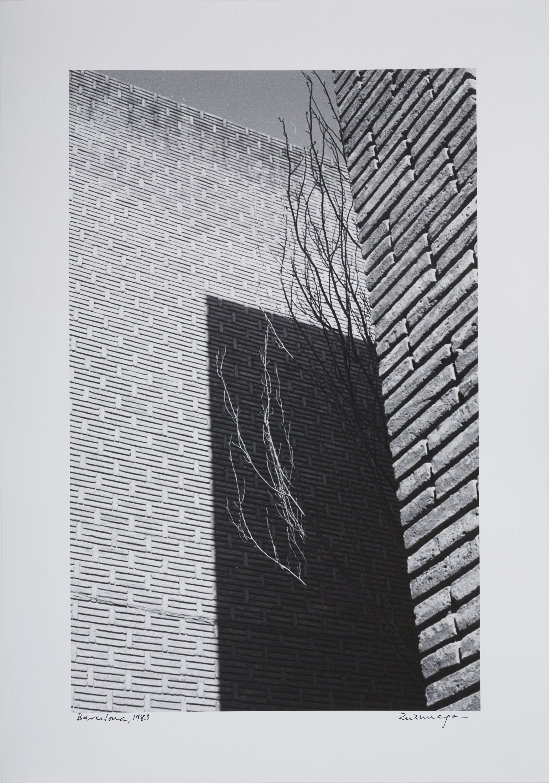 Mariano Zuzunaga - Barcelona - 1983