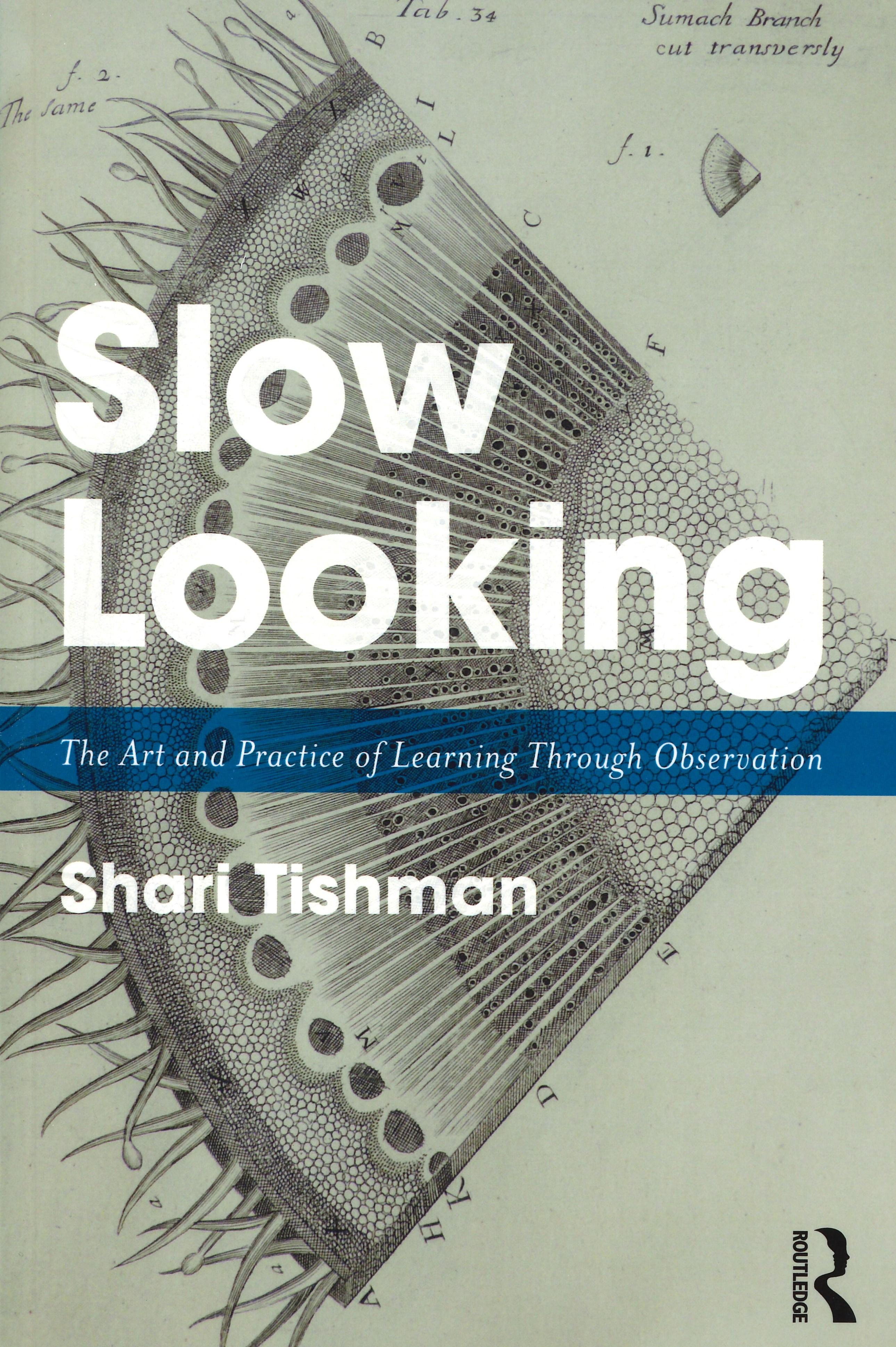 slow looking.jpg