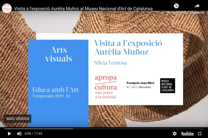 visita guiada a l'exposició d'Aurèlia Muñoz a càrrec de Sílvia Ventosa - Apropa Cultura