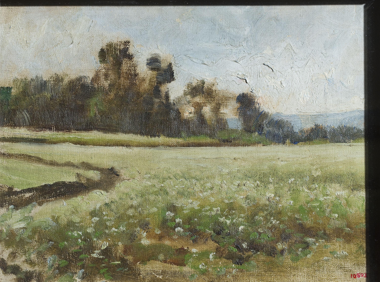 Joaquim Vayreda - Camp de fajol (apunt) - Cap a 1888