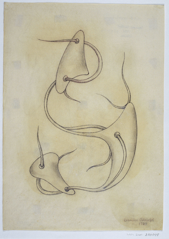 Leandre Cristòfol - Morphology 8 - 1934