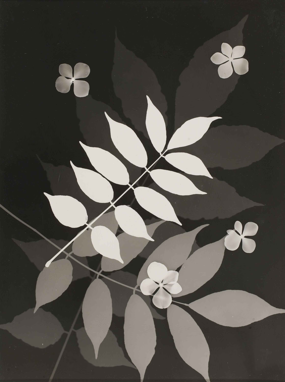 Emili Godes - Untitled - Circa 1930