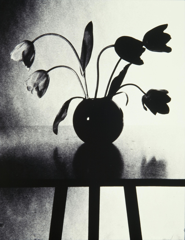 Toni Catany - Tulipes - 1980