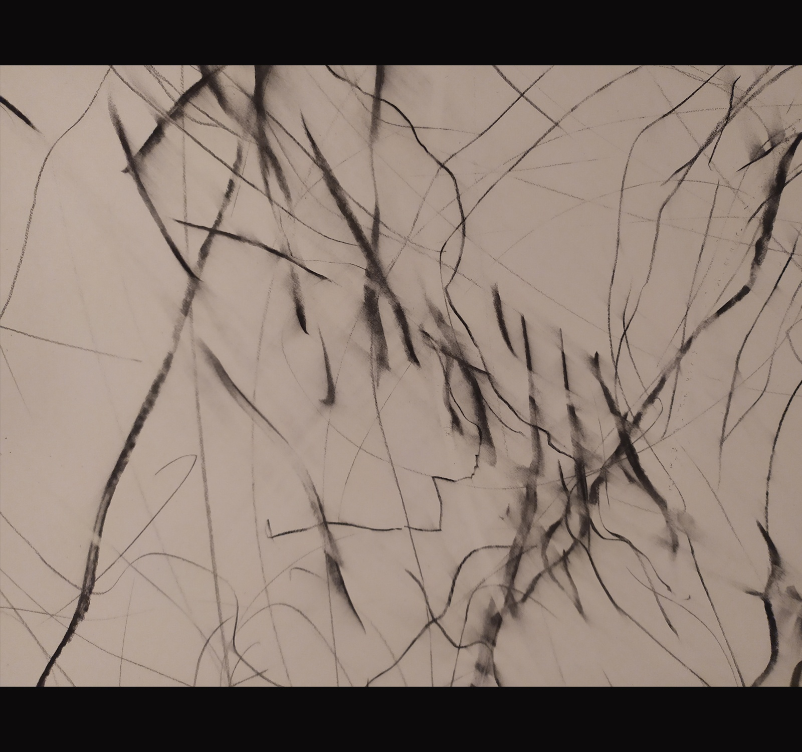 Dibuix d'Èlia Llach