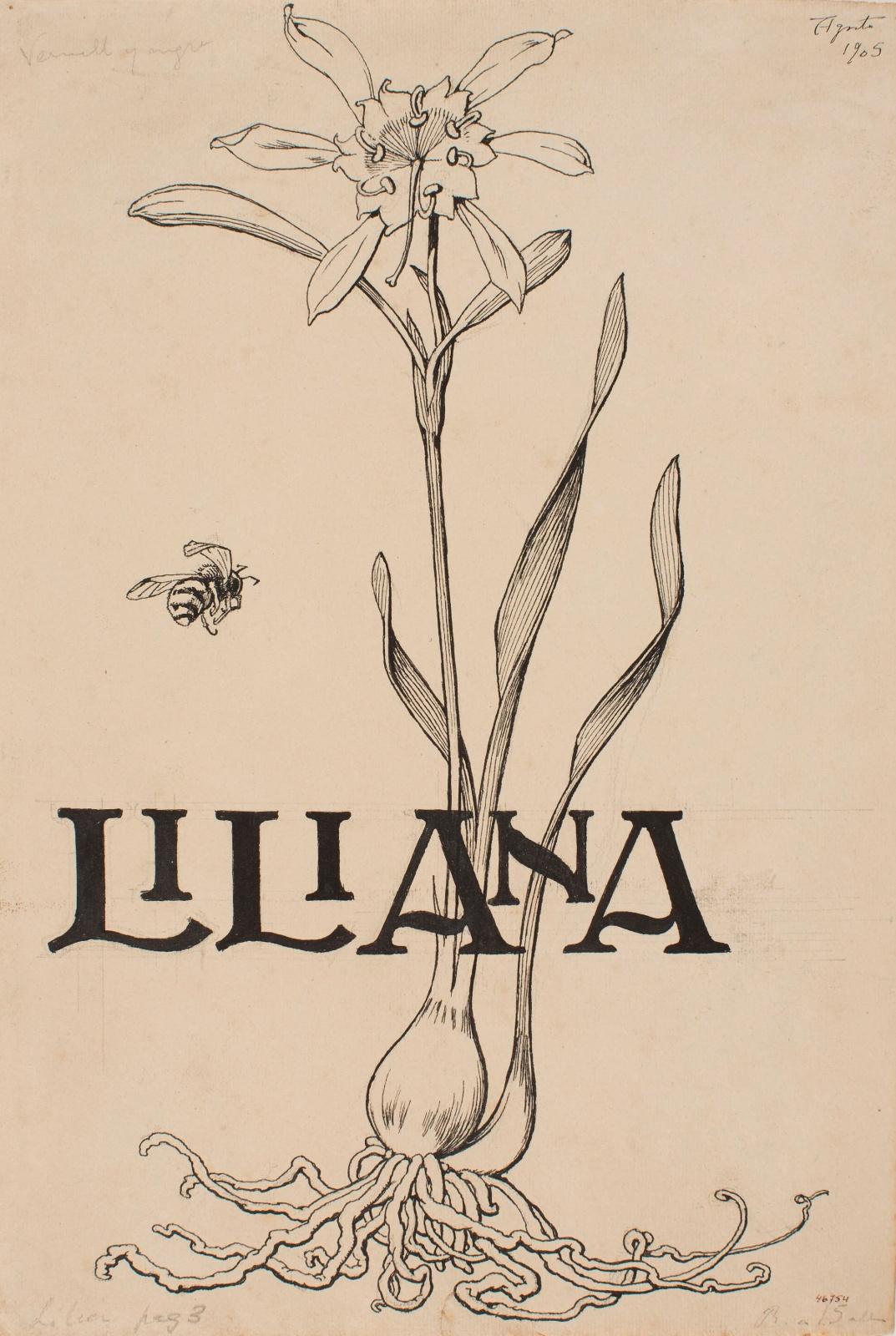Liliana. El món fantàstic d'Apel·les Mestres