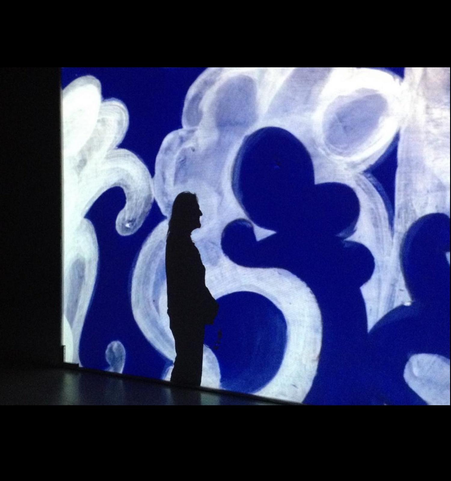 Museu Nacional d'Art de Catalunya | Maniobra de Perejaume