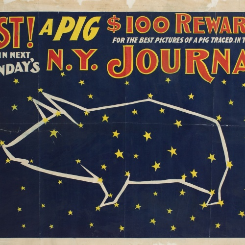 Anònim - Lost! a Pig (N. Y. Journal) - Before 1903