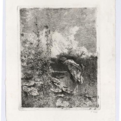 Marià Fortuny - El botànic - Cap a 1868-1869