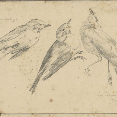 Alexandre de Riquer - Ocells (Primaveres) - 1895