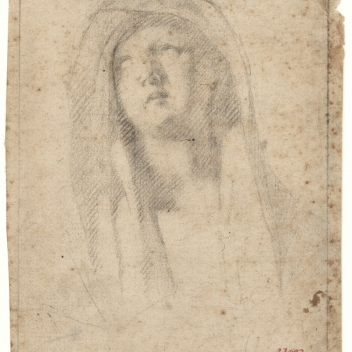 Antoni Viladomat - Study for the 'Pietà' of the altarpiece from the chapel of Els Dolors in the basilica of Santa Maria de Mataró - Circa 1727-1729