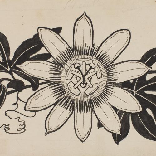 Apel·les Mestres - Passion flower. Page heading for Apel·les Mestres's poem 'Liliana' - Circa 1907