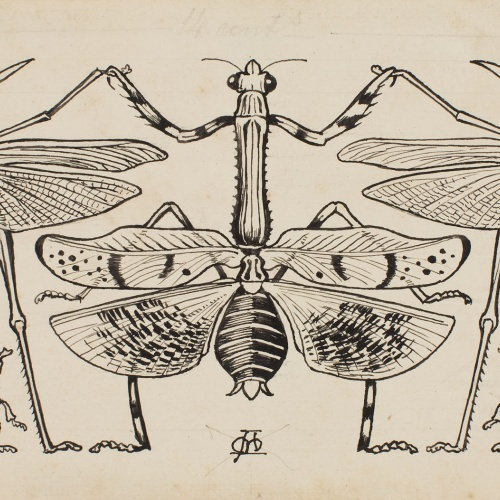 Apel·les Mestres - Grasshoppers, dragonflies and beetles dancing a sardana. Page heading for Apel·les Mestres's poem 'Liliana' - 1902