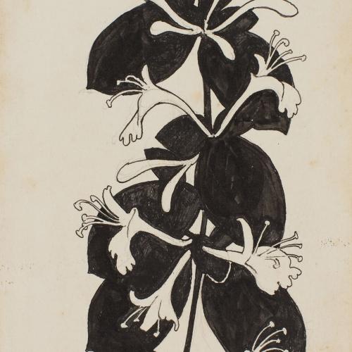 Apel·les Mestres - Honeysuckle branch. Illustration for Apel·les Mestres's poem 'Liliana' - 1902
