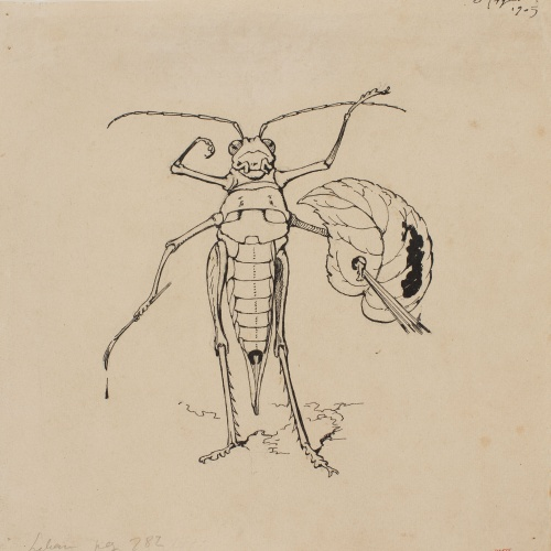 Apel·les Mestres - Praying mantis as a painter. Tailpiece for Apel·les Mestres's poem 'Liliana' - 1905