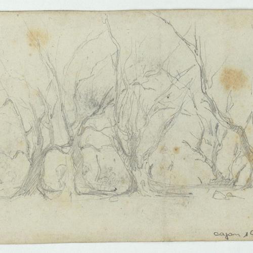 Marià Fortuny - Trees - Circa 1860
