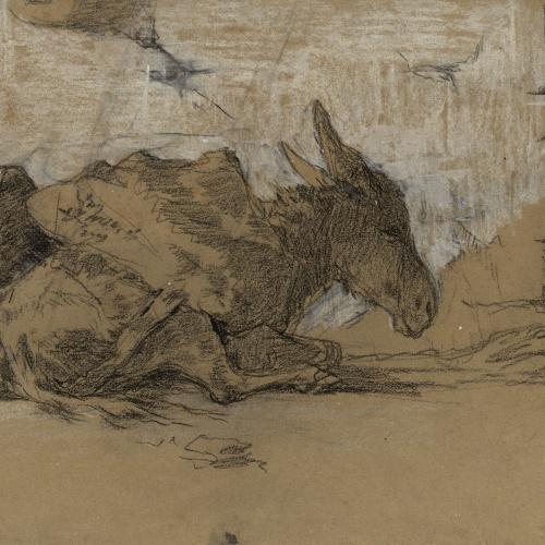 Marià Fortuny - Ruc ajagut - Cap a 1867-1872