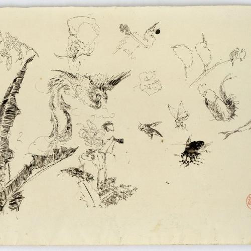Marià Fortuny - Animals i plantes - Cap a 1872-1874