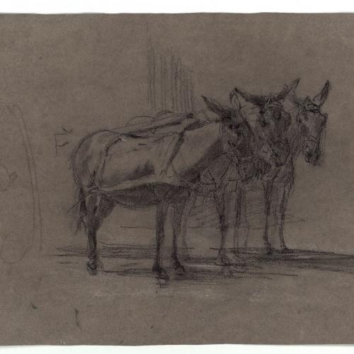 Marià Fortuny - Rucs junyits a un carro (anvers) / Caps de ruc (revers) - Cap a 1867-1870