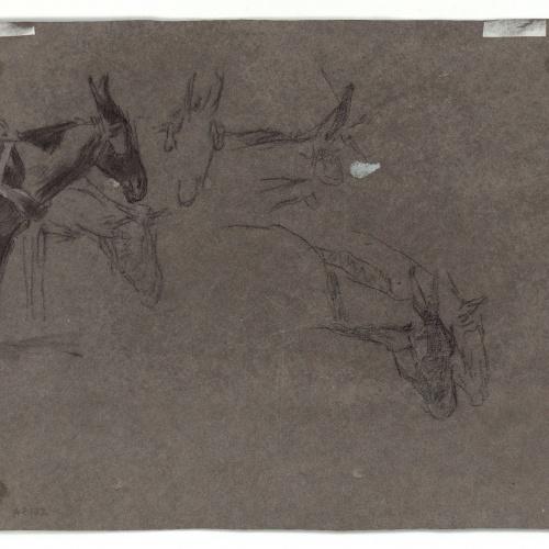 Marià Fortuny - Rucs junyits a un carro (anvers) / Caps de ruc (revers) - Cap a 1867-1870 [1]