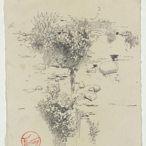 Marià Fortuny - Wall and bushes - Circa 1867-1872