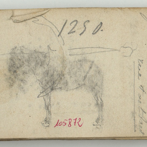 Marià Fortuny - Preliminary drawing of a horse - Circa 1870