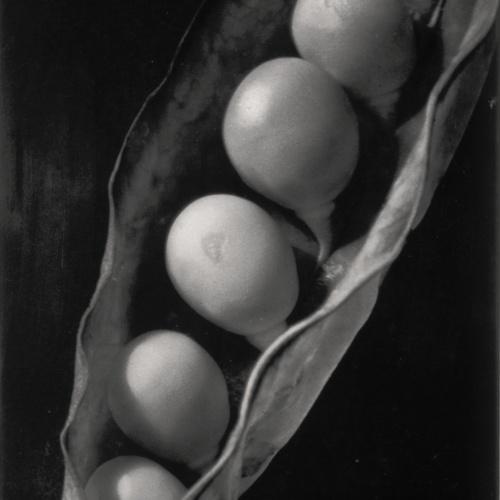 Emili Godes - Pèsols - Cap a 1930