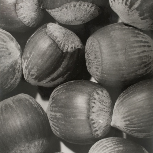Emili Godes - Hazelnuts - Circa 1930