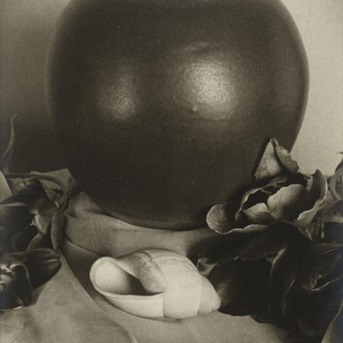 Otho Lloyd - [Still life] - Circa 1945