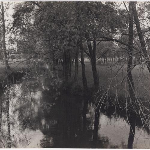 Otho Lloyd - Paisatge - Cap a 1944-1950