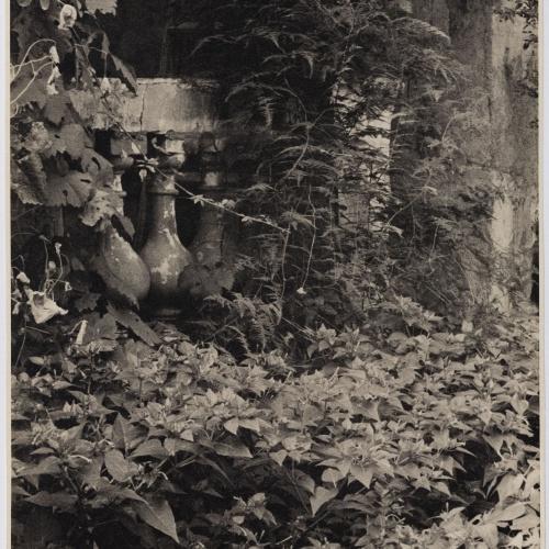 Otho Lloyd - Jardí de la casa del Putxet (Barcelona) - Cap a 1948
