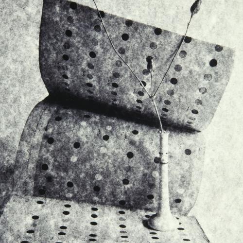 Toni Catany - Homenatge a Chevreuil - 1979 (tiratge 1995)