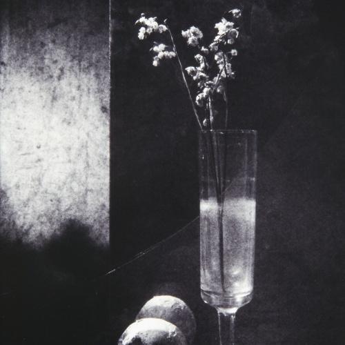 Toni Catany - Homenatge a Sudek - 1986