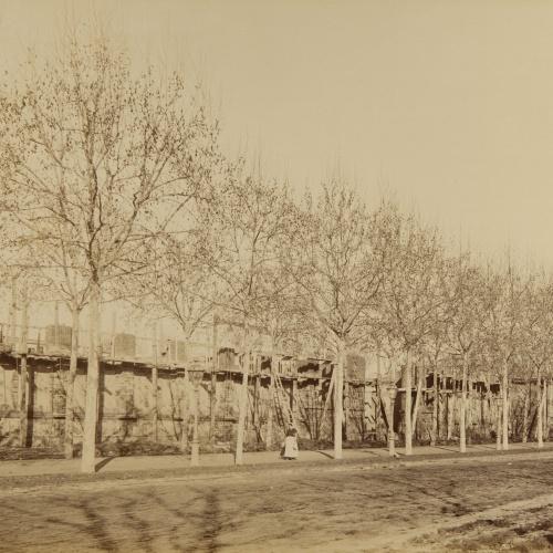 Pau Audouard - Untitled - Circa 1888